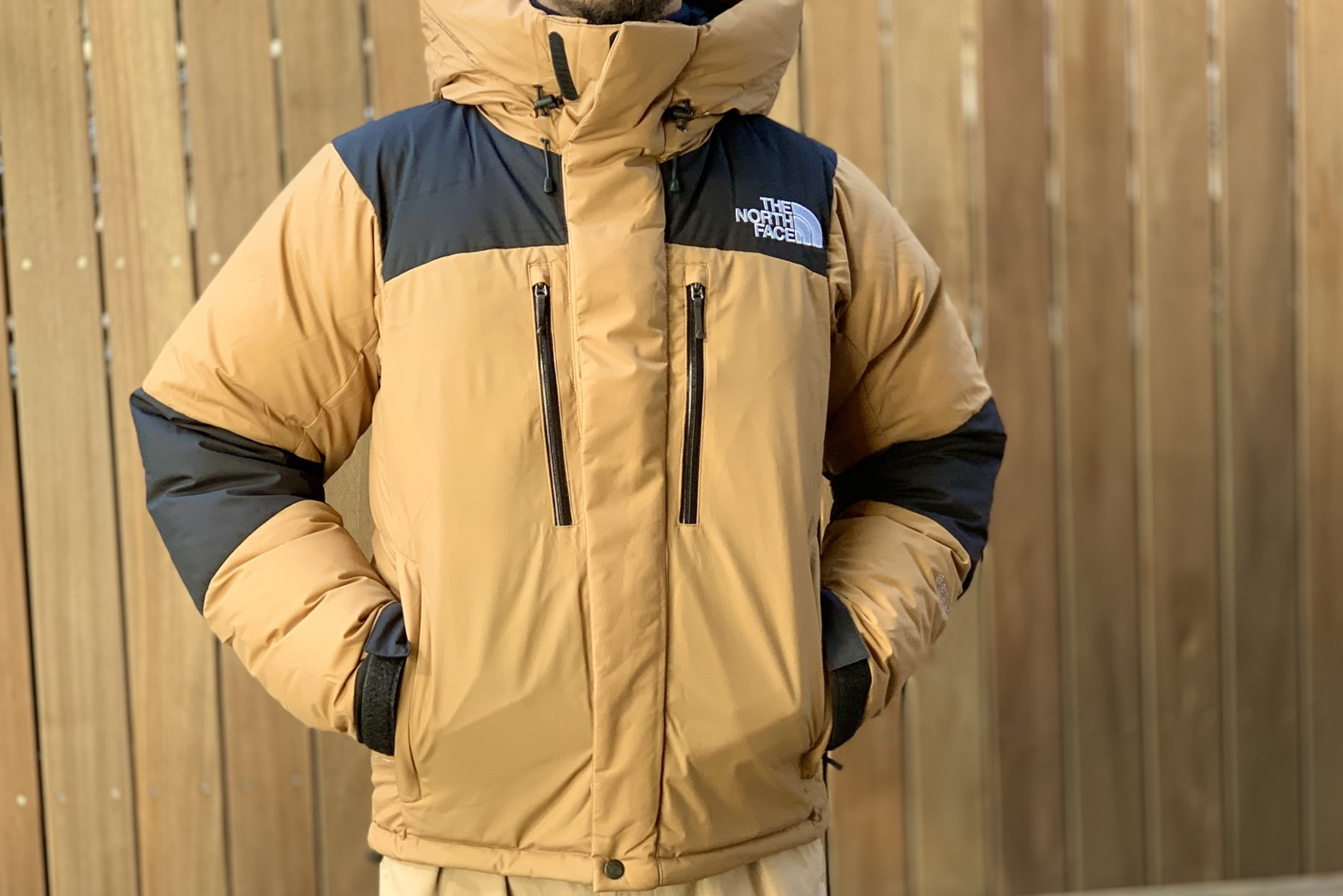 #0278 -THE NORTH FACE   Baltro Light Jacket-